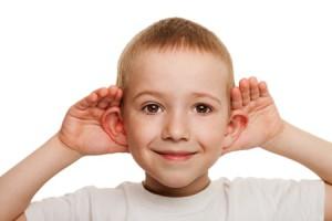 orecchie sventola